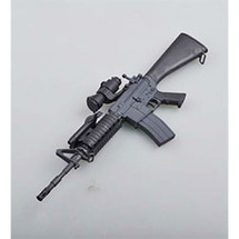 SR16 Rifle Model