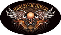 """Harley Davidson Biker to the Bone"" Ande Rooney"