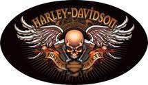 """Harley Davidson Biker to the Bone"" Ande Rooney"