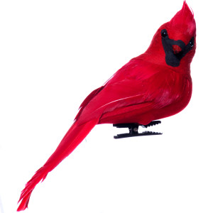 Red Feathered Cardinal Clip-On Ornament