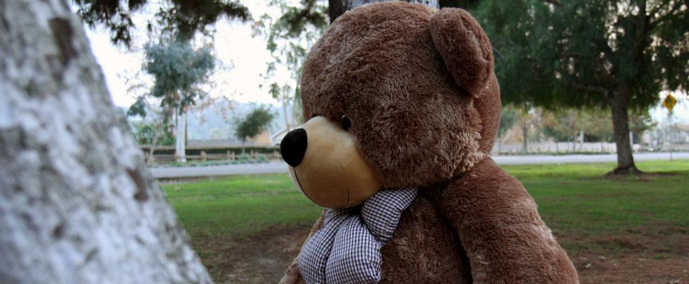5-foot-big-giant-teddy-brand-sunny-cuddles.jpg