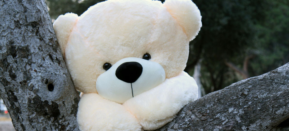 best-sellers-in-5-foot-big-teddy-bears-cozy-cuddles-1.jpg