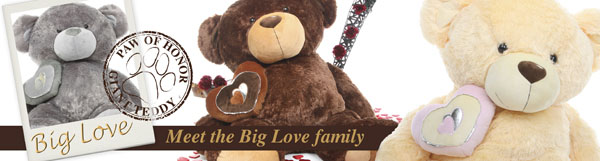 Big Love teddy bear - Meet the family