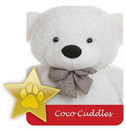 coco-cuddles-famous-giant-teddy-bear.jpg