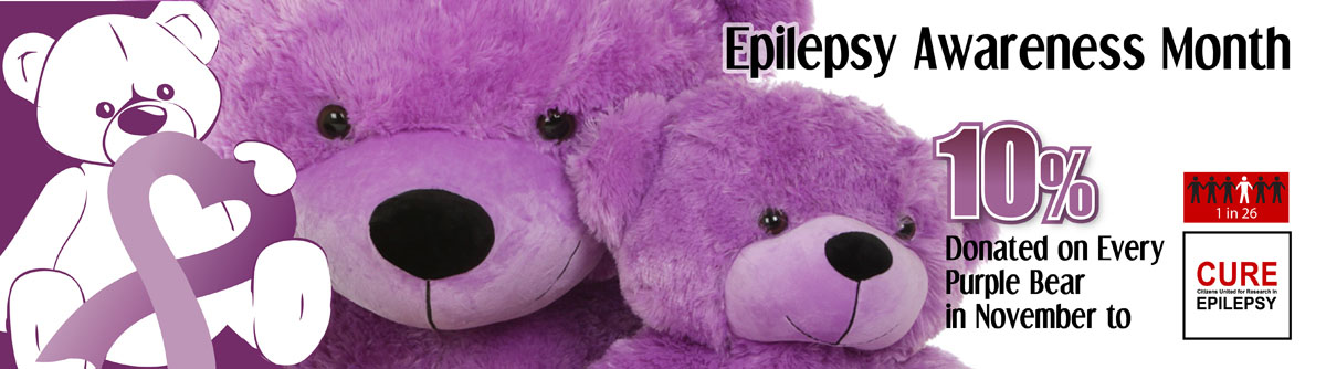 giant-teddy-special-cause-teddy-bears-banner-cure.jpg