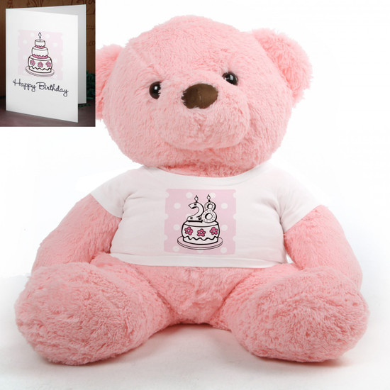 Pink Birthday Cake Chubs teddy bear 38in