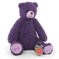 Plush Purple Teddy Bear