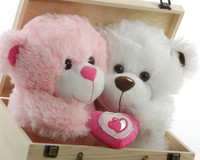 Love Can't Wait! Send this adorable Valentines teddy bear couple Today!