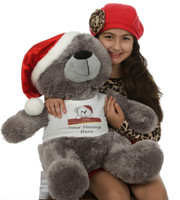 27in Diamond Shags is a silvery grey Christmas teddy bear in a Santa hat with a personalized message from you on his shirt