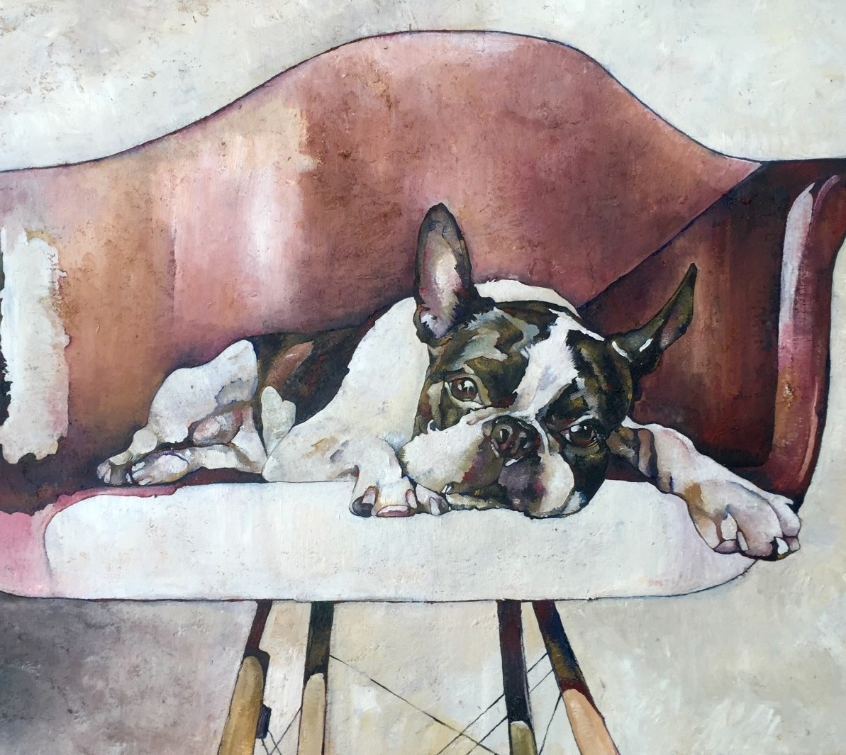 boston-terrier-on-red-chair-crop-1.jpg