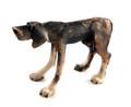 Brindle Standing Dog by Virginia Dowe Edwards