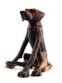 Brindle Seated Dog by Virginia Dowe Edwards