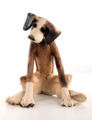 Inquisitive Seated Dog by Virginia Dowe Edwards
