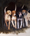 Hounds by Hazel Morgan