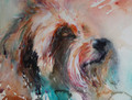 Terrier Trouble - A Canine Study in Watercolour by Jean Haines