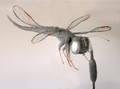 Dragonfly Wire Sculpture by Paula Joule Blake