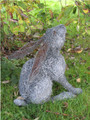 Bunny Rabbit Wire Sculpture by Paula Joule Blake