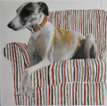 Saskia the Whippet  in Oils by Jay Crowther