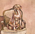 PRINT Yellow Labrador on Ornate Chair by Jenni Cator