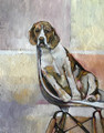 ORIGINAL Beagle on White Plastic Chair by Jenni Cator
