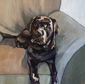 ORIGINAL Black Labrador on Armchair by Jenni Cator