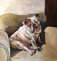 PRINT English Bulldog on Armchair by Jenni Cator