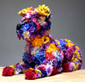 Fleur by Robert Bradford