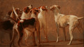 Six Hounds in Expectation by Hazel Morgan