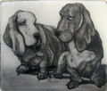 Friends an Etching by Tor Hildyard