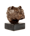Sculpture of Bulldog Head Study by Marie Ackers