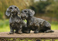 Pair of  Wirehaired Dachshund Sculptures by Rosemary Cook