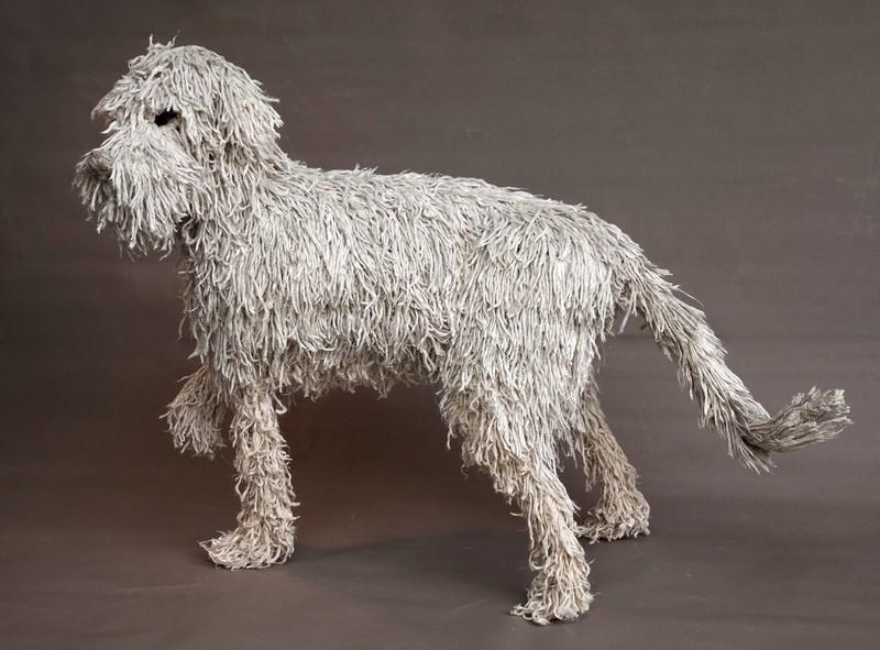 Commerce Home Insurance Dog Breeds