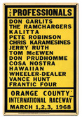 THE PROFESSIONALS Metal Sign 12 x 18 Inches