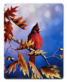 Cardinal Metal Sign 12 x 15 Inches