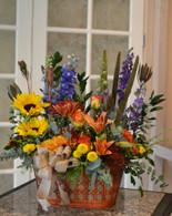 Autumnal Window Box
