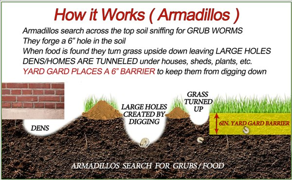 diagram-how-it-works-armadillo-2.jpg
