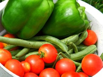vegetablesfree.jpg