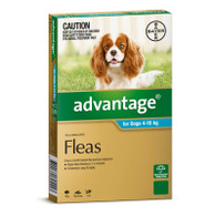 Advantage 6 Month Supply for Dogs 4-10kg