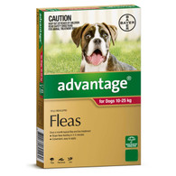 Advantage 6 Month Supply for Dogs 10-25kg