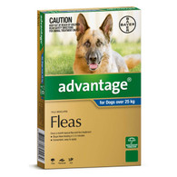 Advantage 4 Month Supply for Dogs over 25kg