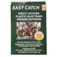 Easy Catch Insect Glue Trap 10 pack