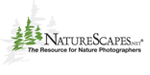 naturescapes-logo3.jpg