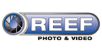 reef-photo-and-video-logo3.jpg