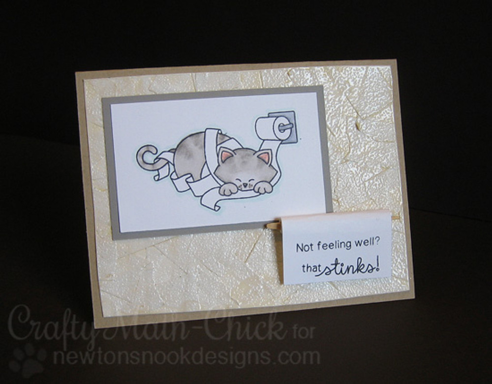Get Well Cat Card | Naughty Newton | 4x6 photopolymer Stamp Set | Newton's Nook Designs