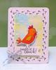 Chicken Scratches   3x4 photopolymer Stamp Set   Newton's Nook Designs
