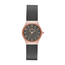 Skagen Grenen Women's Steel Mesh Watch SKW2270