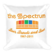 The Spectrum BBB Pillow