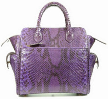 Trapeze Leveler - Python with Matte Finish in Purple