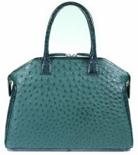 Italo - Alligator Millennium Two Tone and Ostrich in Green