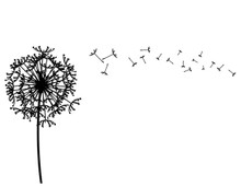 Charming Dandelion Wall Decal Part 25